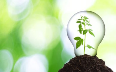 Waste-to-Energy programmes key in the sustainable circular economy